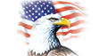 American Eagle Trade Group- Global Fashion Distributors
