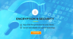 Why CryptoLocker Prevention is Good for Business