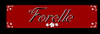 Forelle Ltd.