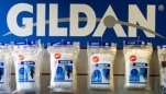 Apparel Wholesaler Gildan Takes On Hanes, Fruit of the Loom