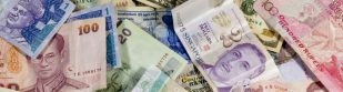 Origins of currencies: from jagged edges to flowers